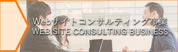 Webサイトコンサルティング